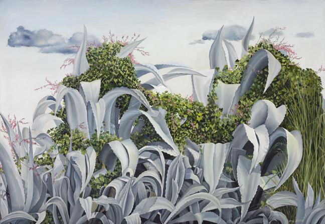 Grey Cactus